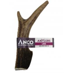 AC Antler Large